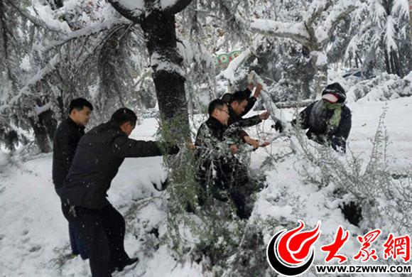金发人体150第一名_2015第一场雪 - 大众网菏泽新闻报道